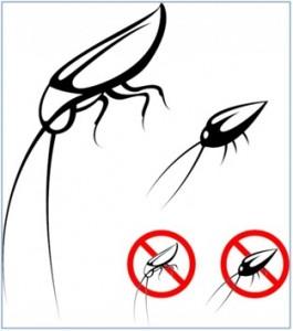 York Pest Control