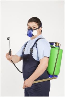 Pest exterminator with equipment